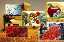 11 واحد صنایع تبدیلی و تکمیلی بخش کشاورزی کرمانشاه احداث شده است
