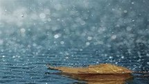 سامانه بارشی از بعدازظهر امروز وارد اردبیل می شود
