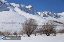 بارش برف زمستانی همراه با کولاک در بوئین میاندشت