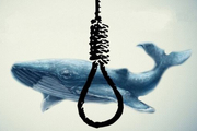 بازی نهنگ آبی نمیتواند عامل اصلی خودکشی یک فرد باشد