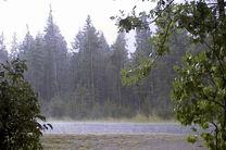 بارندگی در استان گلستان ۳۲ درصد کاهش یافت
