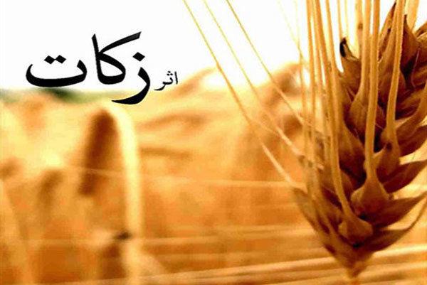 کرمانشاه در پرداخت زکات جزو ۱۰ استان برتر کشور است