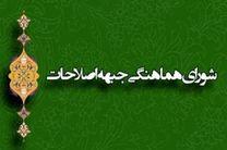 سید هادی خامنه ای دبیرکل شورای هماهنگی جبهه اصلاحات شد