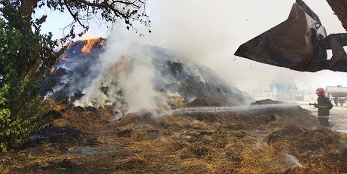آتشسوزی در بزرگترین مجتمع دامداری نیشابور مهار شد