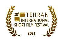 شیوه برگزاری ترکیبی حضوری و آنلاین در جشنواره فیلم کوتاه تهران دائمی شده است
