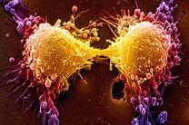 مداخله غیرقانونی در حوزه درمان سرطان های غیر خونی