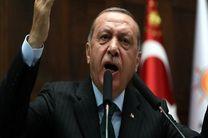اردوغان از توافق خلع سلاح شبه جزیره کره حمایت کرد