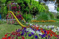 نصب 375 المان حجمی گل در شهر اصفهان