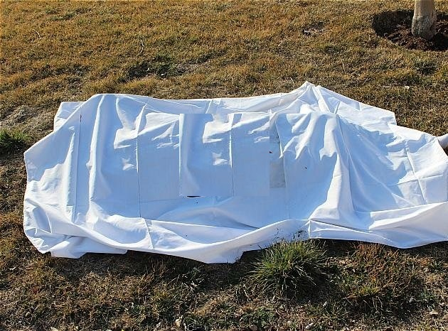 پیدا شدن یک جسد  در روستای کرگان میناب