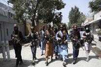کشته شدن 8 داعشی توسط طالبان