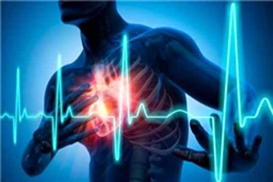 فست فودها دشمن بزرگ سلامت قلب هستند/ تا میتوانید ورزش کنید
