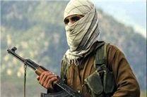 طالبان مذاکره با دولت افغانستان را تکذیب کرد