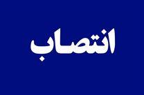 مدیرکل دفتر امور سیاسی وزارت کشور منصوب شد