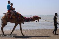 سواحل بندرعباس میزبان مسافران نوروزی