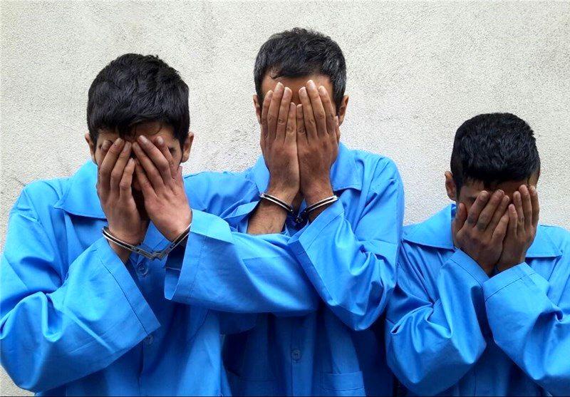 دستگیری یک باند سارق  میراث فرهنگی در دزفول