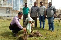 شهرداری خرمشهر از بانوی همیار فضای سبز تقدیر کرد