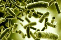 عفونت های بیمارستانی گریبانگیر حداکثر 15 درصد بیماران بستری