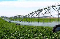 اجرای ۹۰۰ طرح کشاورزی در هرمزگان