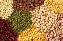 ۷۶۴ هزار تن حبوبات در کشور تولید می شود