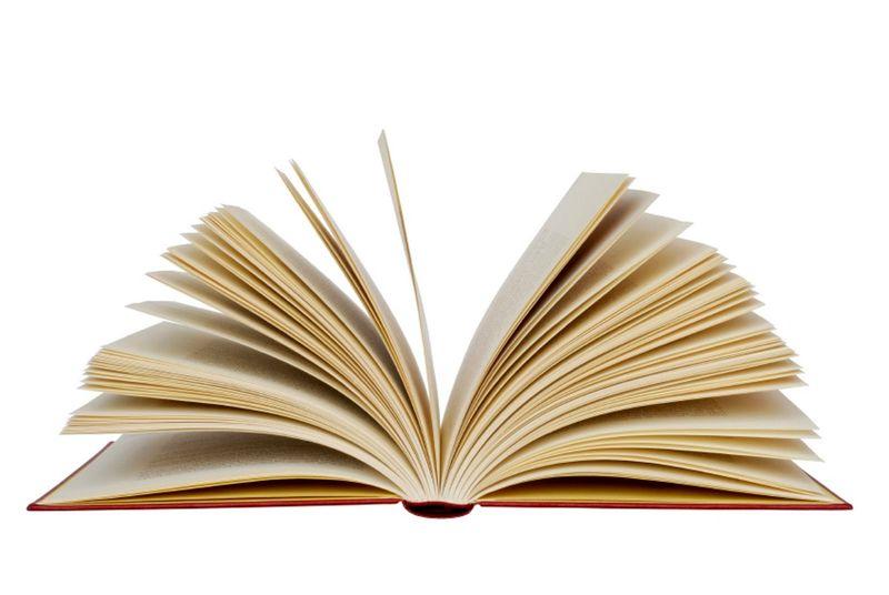 صعود اثر جدید ریچل هالیس در لیست پرفروش ترین کتاب ها