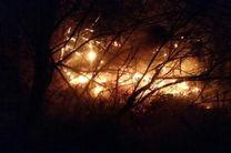 آتش سوزی گسترده در جنگل های باغملک