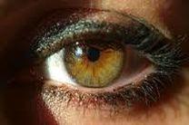 شناسایی انگل عامل عفونت قرنیه چشم در استفادهکنندگان لنزهای تماسی