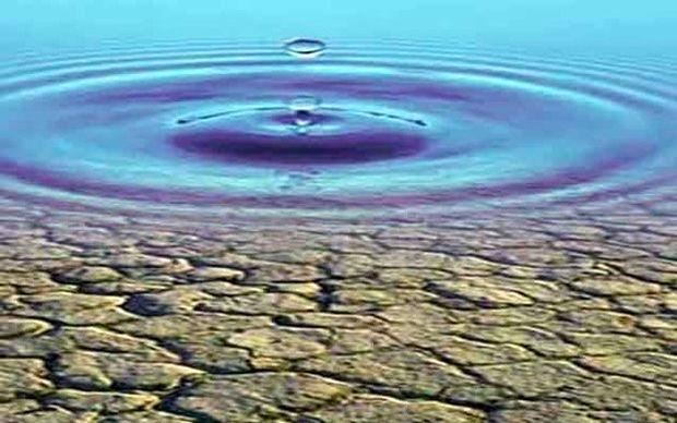 گلستان نحل بحران آب یازمند خرد جمعی است