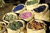 سومین جشنواره ملی گیاهان دارویی برگزار می شود