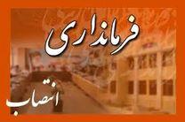 سعید حاجیان فرماندار شادگان شد