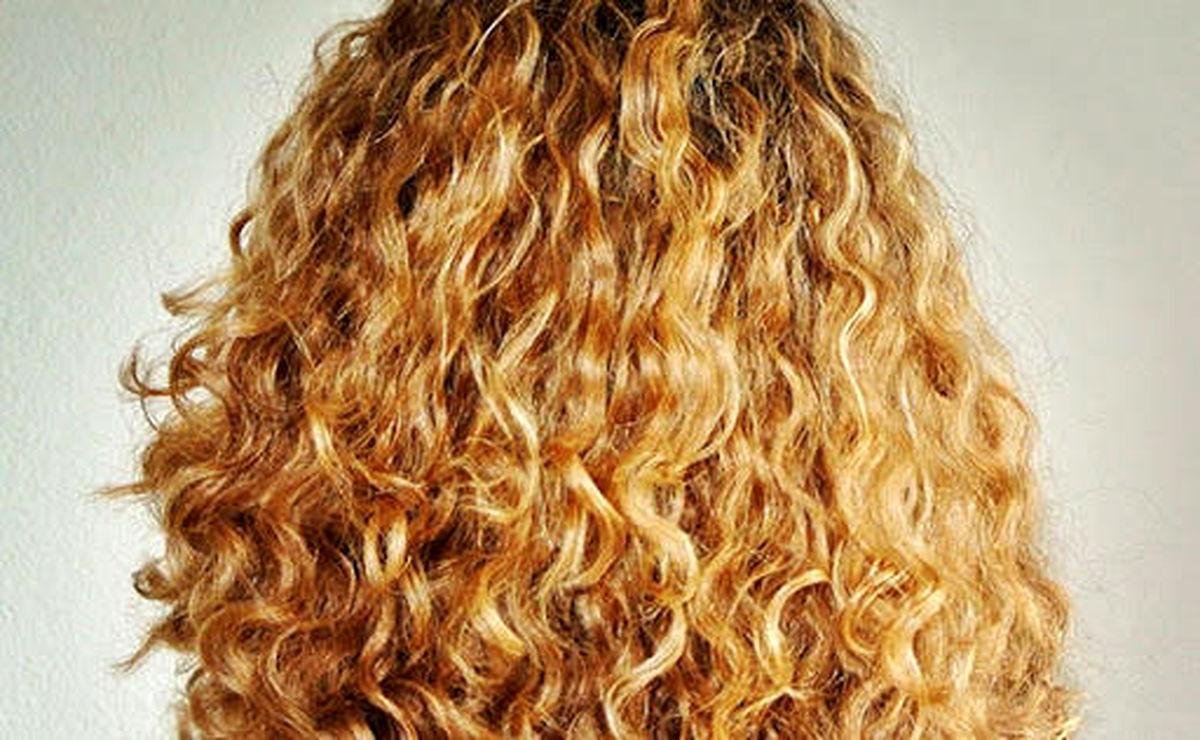 ۲ خرداد ماه، روز جهانی مو فرفری ها/ چگونه از موهای فر مراقبت کنیم؟