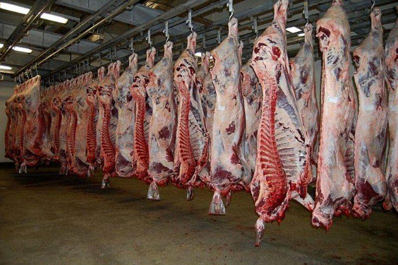 تولید سالانه 10 هزار تن گوشت قرمز در هرمزگان