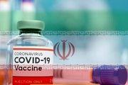 مجوز اجرای فاز دوم و سوم تست انسانی «واکسن کووایران برکت» صادر شد