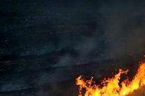 نابودی بیش از 1000 تن محصول و خسارت یک میلیارد تومانی به بخش کشاورزی رهاورد آتش زدن مزارع در گلستان