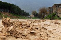 استان لرستان از ریسک بالایی در زمینه سیلاب برخوردار است