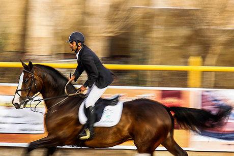 چهارمی سواری استقامت ایران در رقابتهای بین المللی فرانسه