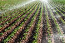 ۲۶۰ کانون یادگیری در مزارع کشاورزان نمونه/برگزاری سی و دومین دوره معرفی نمونه های ملی بخش کشاورزی