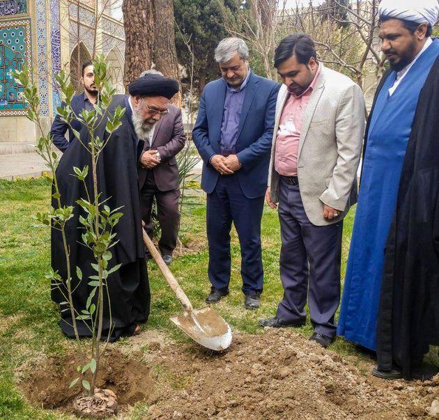 اقدام شهرداری اصفهان در استفاده از گونه های مقاوم به کم آبی، ارزنده است