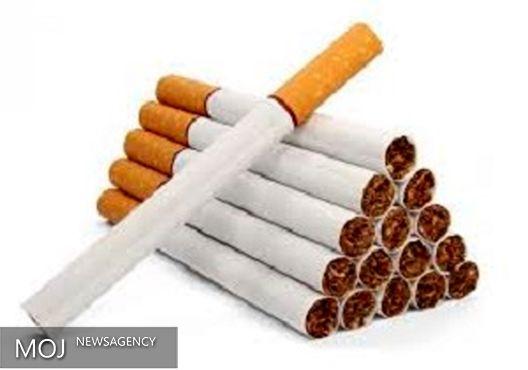 بیش از ۳ هزار تن سیگار به کشور وارد شد