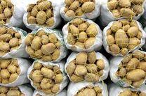 قیمت سیبزمینی در بازار مازندران افزایش یافت