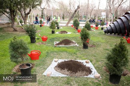 کاشت درخت فرهنگ، هنر و رسانه
