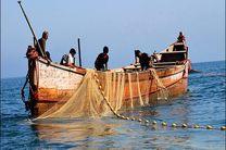 ممنوعیت صید هامور ماهیان و حلوا سفید در آب های خلیج فارس