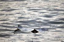 لاشه بالگرد سقوط کرده در آبهای خلیجفارس پیدا شد
