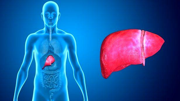 دارویی که امید به درمان کبد چرب را افزایش میدهد