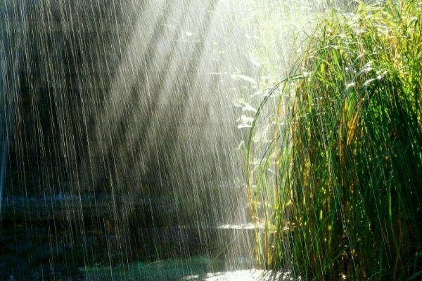 تداوم بارش ها در استان اصفهان