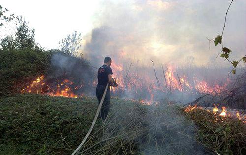پوشش ۱۰۷ مورد حریق و حادثه توسط آتش نشانان شهر رشت