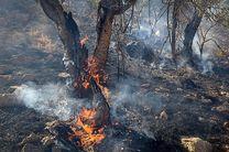 هشدار سازمان محیطزیست درباره آتشسوزی در جنگلها و مراتع طی تعطیلات پیشرو