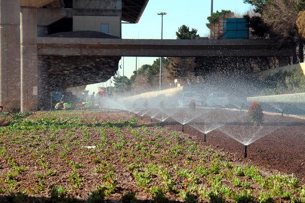 احداث بیش از 8 هزار متر مربع فضای سبز در بلوار شهدای نیروی انتظامی