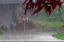 افزایش 3 برابری بارش نسبت به سال گذشته در شهرستان آران وبیدگل