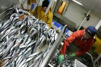 تعهد ۹ شرکت بزرگ شیلات به حفظ اقیانوسهای جهان