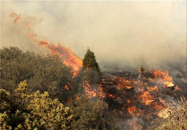 حریق شدن مناطق جنگلی شهرستان گالیکش طعمه
